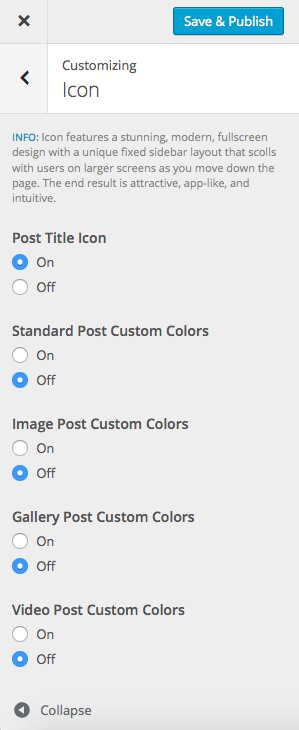 Icon specific options