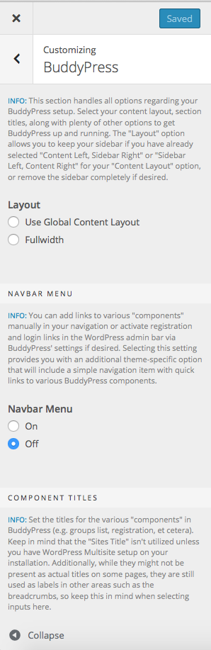 BuddyPress options available