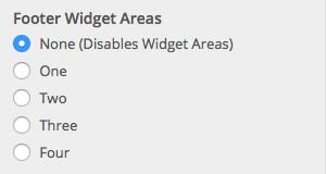 Footer Widget Options