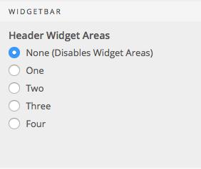 Header Widgets