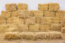 straw bales.png