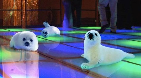 clubbing-baby-seals-16038.png