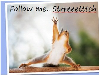 follow me stretch.jpg