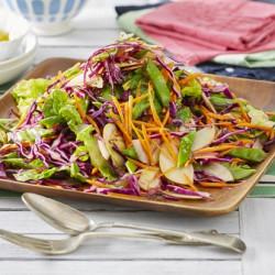 Purple koal lettuce met kids