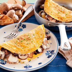 Ricotta a madarch plant tortillas
