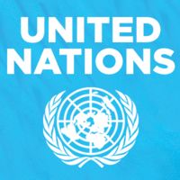 United Nations (UN) logo