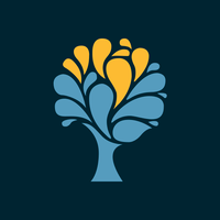 Spring Venture Group, Inc logo