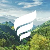 New Fortress Energy LLC