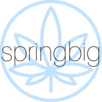 SpringBIG