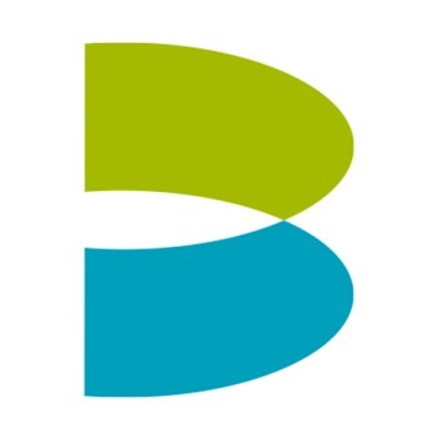 Brierley & Partners logo
