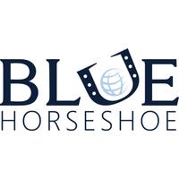 Blue Horseshoe Solutions