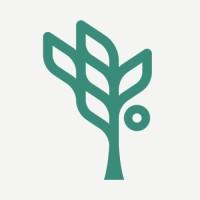 Social Interest Solutions logo