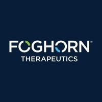 Foghorn Therapeutics Inc.