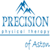 Precision Physical Therapy - Aston