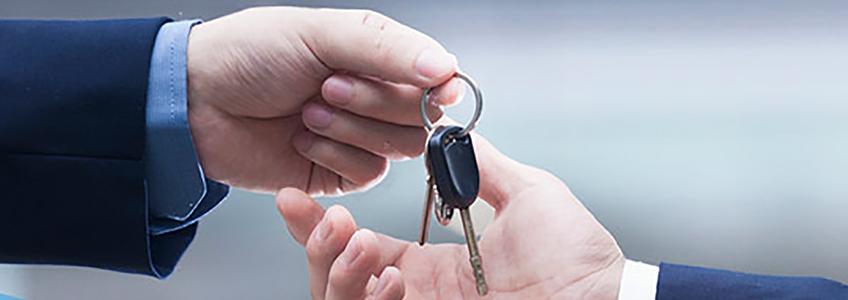 Características de los servicios de conductor elegido y conductor profesional
