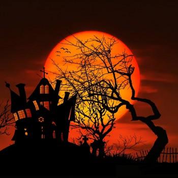 A Monster Musical cover art