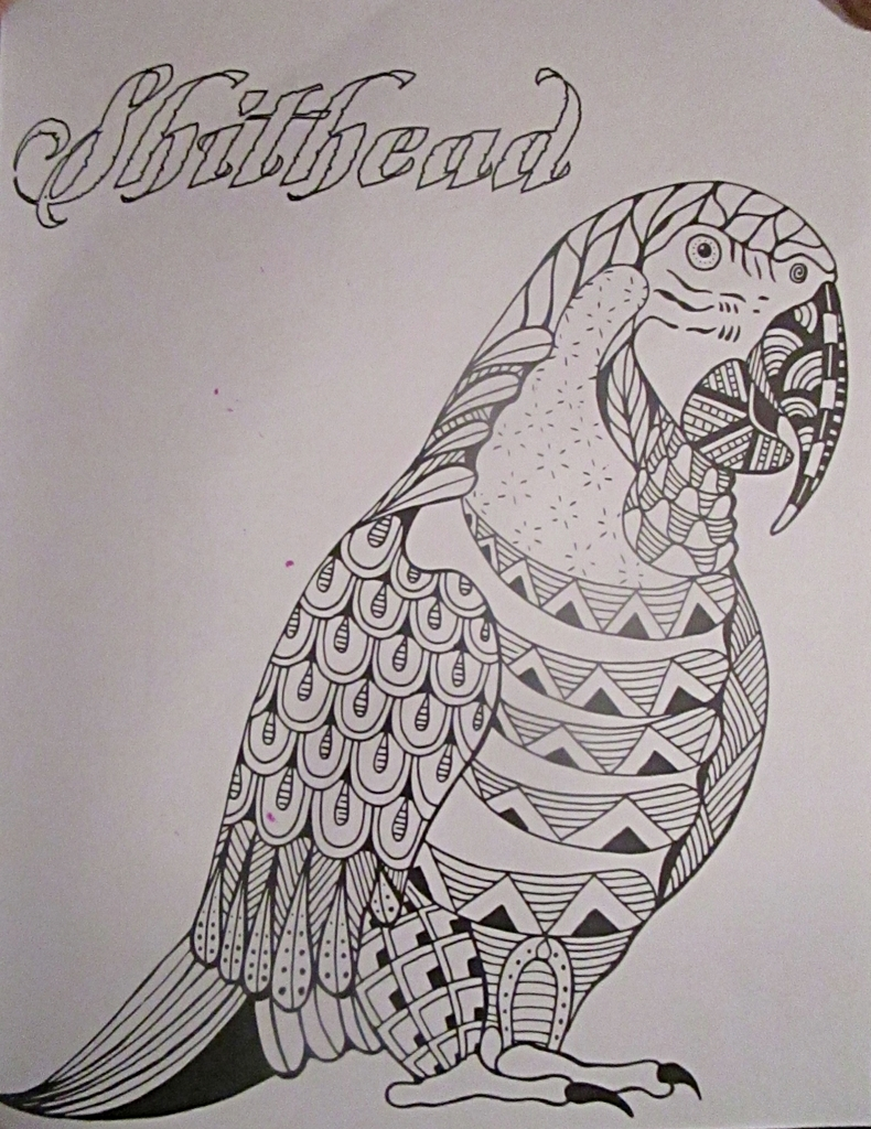 Fancy swear words coloring book - It S Refreshing To Finally See A Bird Self Identifying As A Shithead Because Birds Are Horrible Creatures Pooping On Cars And Heads And E Readers Rude