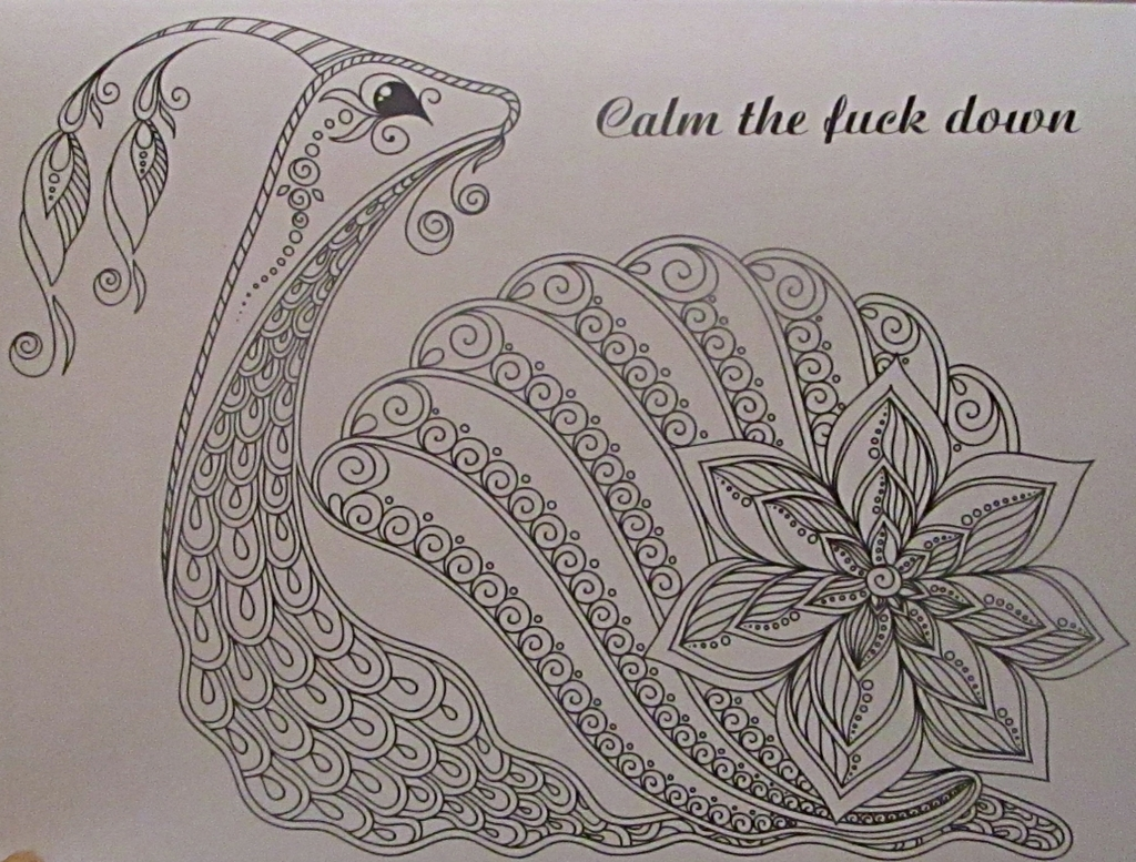 Fancy swear words coloring book - A Nice Unintentional Response To That Shouty Monkey Above This Picture Is Also A Lesson If This Snail Can Remain Calm While A Giant Flower Is Growing Out