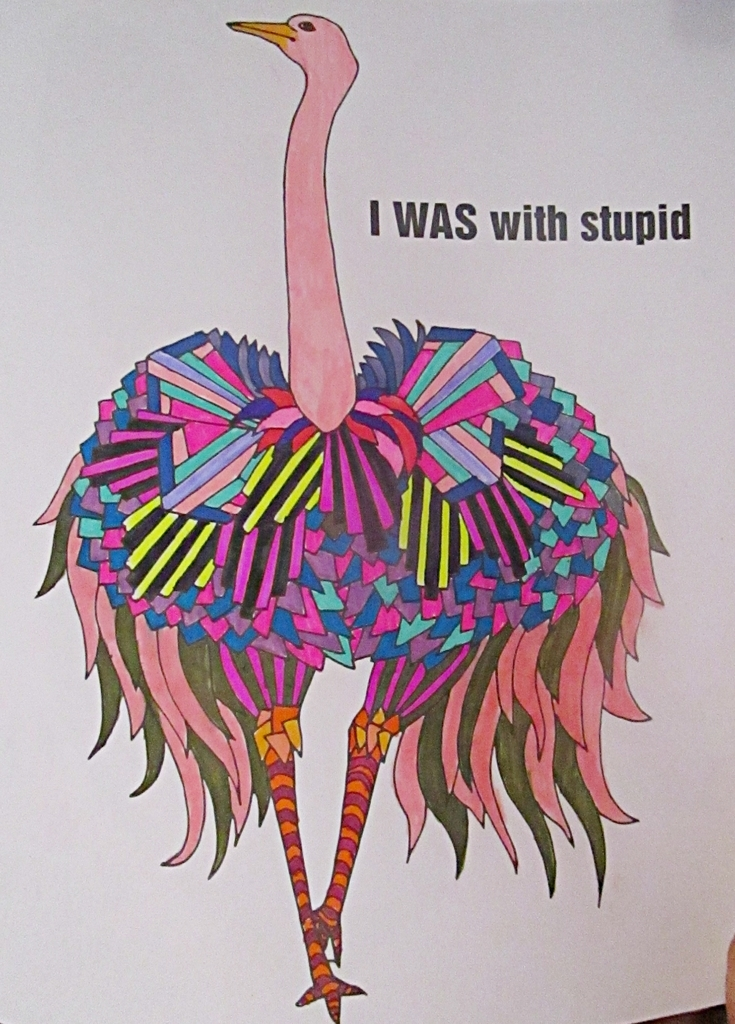 This One Has No Place In The Swear Word Coloring Book As Stupid Is Not A But Well Let It Go Cuz That Ostrich Pretty Rad