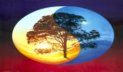 Characteristics of Life ( Read ) | Biology | CK-12 Foundation
