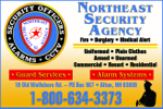 Website for Northeast Security Agency