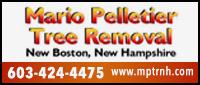 Website for Mario Pelletier Tree Removal