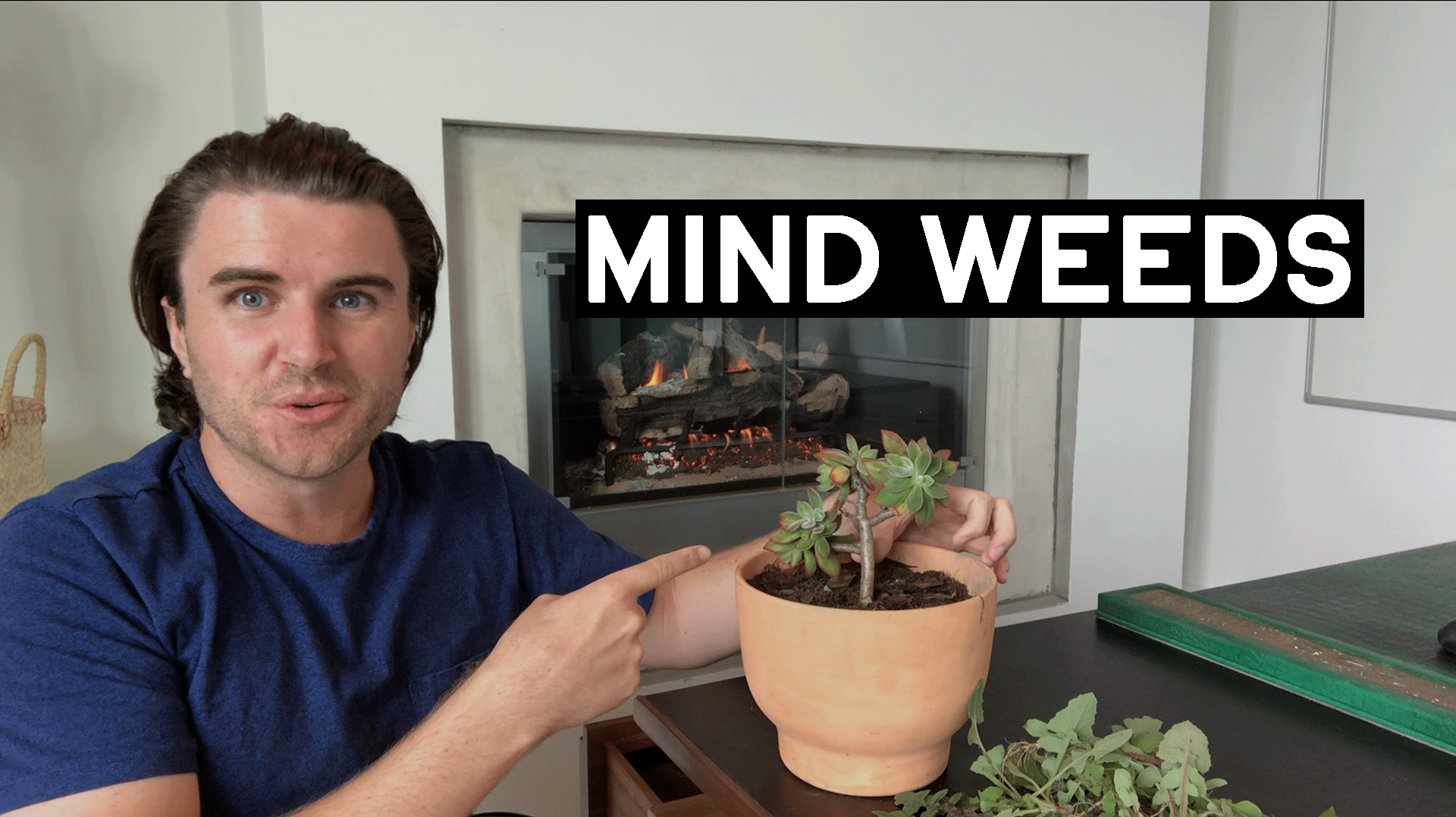 Why Your Mind Is Full Of Weeds