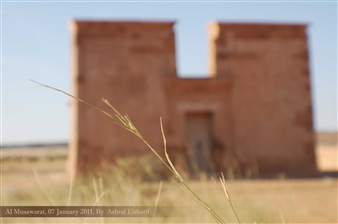 Ashraf Elsharif - Grass and the Lion Temple Photograph on Fine Art Paper, Photography