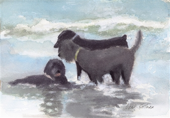 Nancy Holleran - Dog Thief on the Beach Watercolor on Paper, Paintings