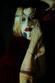 Gatscher von Burgsdorff - Mephisto Feminin Mixed Media on Aluminum, Photography