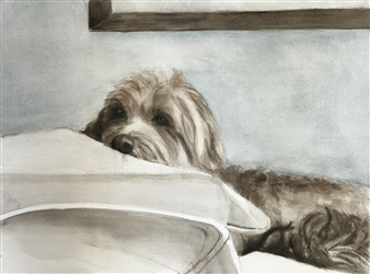 Nancy Holleran - Dog Meditating Watercolor on Paper, Paintings