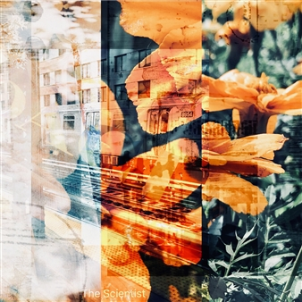 Stephanie A. Pitoy - The Knowing, No. 5 Digital C-Print, Photography