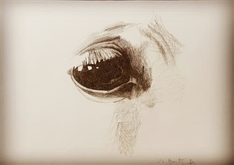 Anna Weichert - Horse Eye Pencil on Paper, Drawings