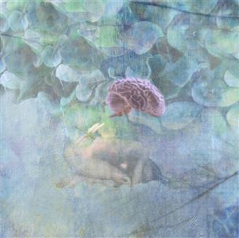 Sheree Friedman - Hydrangea et Jardins Soft Fine Art Print Archival Paper, Prints