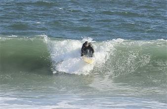 Linda Liao - Surferscape B Color Digital Photography, Photography