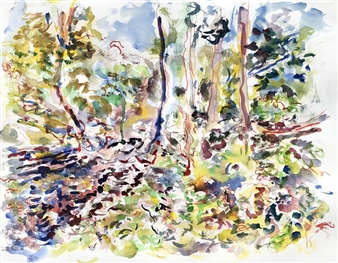 James Chisholm - Millbrook: Trees Fallen Across Brook from Winter Storms (May/June) Watercolor on Paper, Paintings
