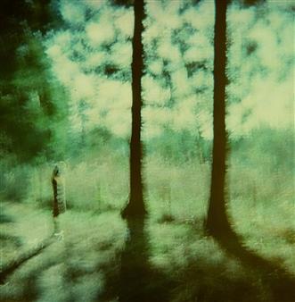 Takuya Yamamoto - Negative Film 21 Print on Photographic Paper, Photography