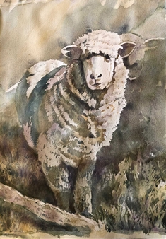 Pauli Zmolek - The Sheep Watercolor & Pastel on Paper, Paintings