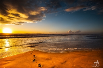 Mireille Pizzo - Footprints in the Sand Photograph on Metallic Paper, Photography
