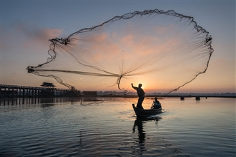 Olga Loschinina - Myanmar Fisherman Photograph on Plexiglass, Photography
