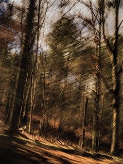 Erin Wang - Fleeting Landscape VI Photograph on Fine Art Paper, Photography