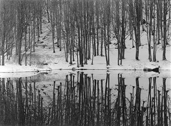 Antonio Biagiotti - Reflections Photographic Print on Board, Photography