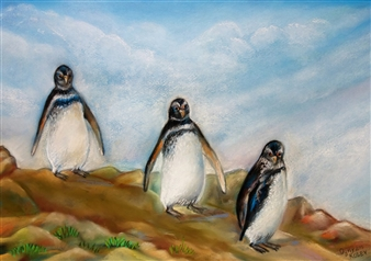 Ognyan Kostov Kolev - Pingüinos Magallanes Patagonia Pastel-Chalk on Special French Paper, Paintings
