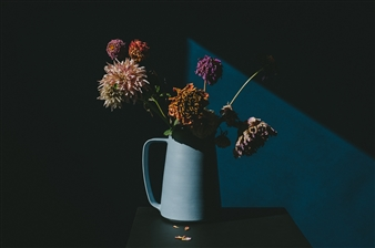 Heather Bragman - Dahlias and Blue Pitcher Photograph on Hahnemühle Paper, Photography