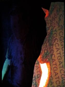 Gatscher<br /> von Burgsdorff - Entelechie Digital Photo Painting on AluDibond, Photography