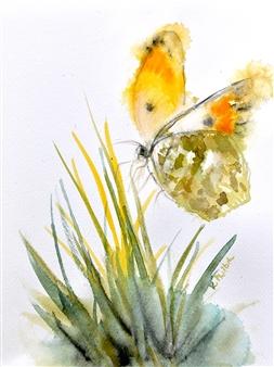 Rine Philbin - Flying Free Watercolor on Paper, Paintings