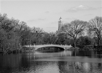 Carolyn Rogers - Central Park Bridge Platinum/Palladium Photograph, Photography