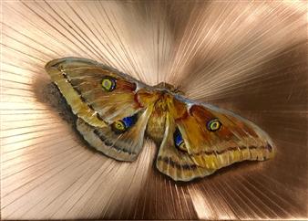 John Britton - Moth 1 Oil on Metal, Paintings