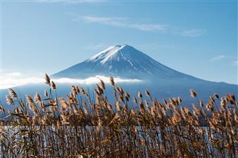 Lê Phương Hiền - Fuji Mountain Archival Pigment Print, Photography