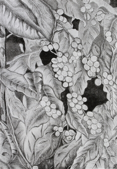 Maria Antonia Mena Lagos - Harvesting Time Dry-Point on Cotton Paper, Prints